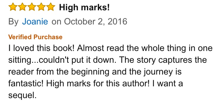 Write a Review — Independent Authors Everywhere Will Thank You ...